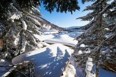 De bomen en de sneeuw van de sneeuwstad van China ` s stock afbeelding