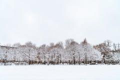 De bomen in het park zijn behandeld in sneeuw royalty-vrije stock fotografie