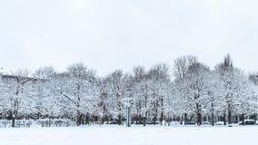 De bomen in het park zijn behandeld in sneeuw royalty-vrije stock afbeelding