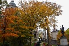 De bomen met kleurrijke bladeren, de herfst worden behandeld kwamen in Quebec dat Stock Afbeelding