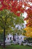 De bomen met kleurrijke bladeren, de herfst worden behandeld kwamen in Quebec dat Royalty-vrije Stock Foto