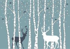 De bomen van de berk met herten, vectorachtergrond Stock Foto