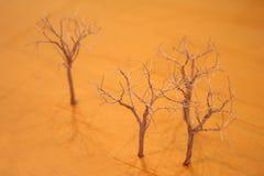 De bomen van de draad stock foto's