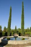 De bomen van de fontein en van de cipres in Park Stock Foto's
