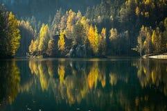 De bomen van de herfst die meer worden overdacht Stock Foto's