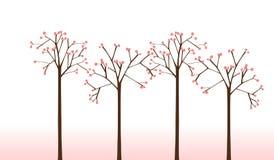 De Bomen van de kers Stock Afbeelding