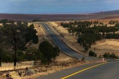 De Bomen van de Landschappen van de weg drogen Heuvels Stock Foto