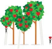 De Bomen van de liefde Stock Foto