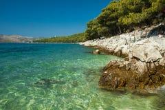 De Bomen van de pijnboom op de Adriatische Overzeese Kust dichtbij Trogir Royalty-vrije Stock Foto