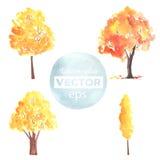 De bomen van de waterverfherfst in vector worden gemaakt die vector illustratie