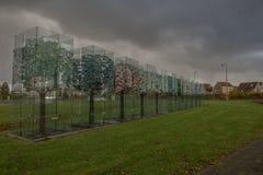 De bomen van glas in Haaksbergen Royalty-vrije Stock Afbeelding