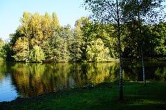 de bomen van het de bezinningswater van de meerherfst Royalty-vrije Stock Foto