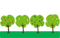 De bomen van het fruit Stock Afbeeldingen