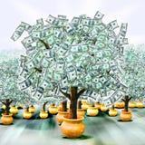 De bomen van het geld Stock Afbeelding