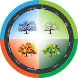 De bomen van het jaarseizoen Royalty-vrije Stock Afbeeldingen