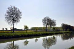 De bomen van het kanaal Royalty-vrije Stock Fotografie