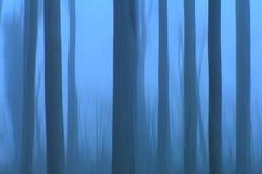 De bomen van het spook Stock Afbeelding