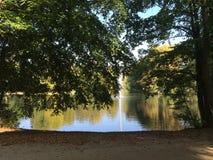 De bomen van Kaisergartenduitsland Autumn Nature Royalty-vrije Stock Foto's