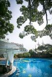 De bomen voegen blauw openluchtschip samen Royalty-vrije Stock Foto's