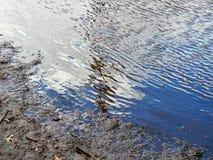 De Bomenvijver van rivier Abstracte Wolken Stock Foto's