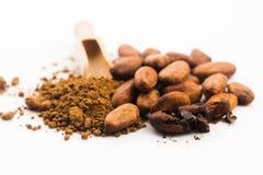De bonen van de cacao en cacaopoeder royalty-vrije stock afbeelding