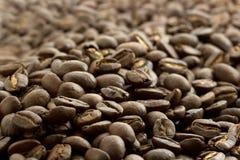 De bonen van Cofee Stock Foto's