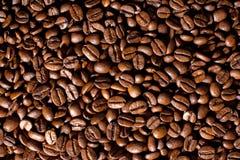 De bonen van Coffe Stock Fotografie