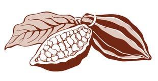 De bonen van de cacao Stock Fotografie