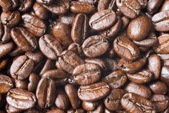 De bonen van de koffie Royalty-vrije Stock Foto's