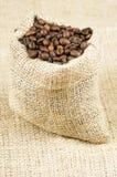 De Bonen van de koffie. Royalty-vrije Stock Afbeelding