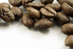 De bonen van de koffie Royalty-vrije Stock Foto