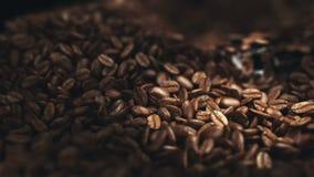 De bonen van de koffie in de molen stock footage