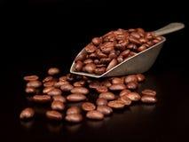 De Bonen van de koffie in een Lepel stock foto
