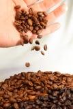 De Bonen van de koffie en Hand Stock Afbeelding