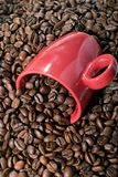 De Bonen van de koffie en mok stock foto