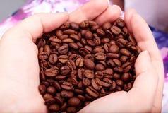 De bonen van de koffie in handen Stock Fotografie