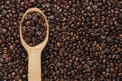 De bonen van de koffie in houten lepel Stock Foto's