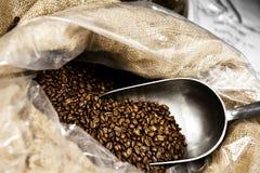 De bonen van de koffie met lepel royalty-vrije stock afbeeldingen