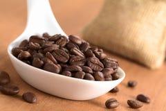 De Bonen van de koffie op Ceramische Lepel Royalty-vrije Stock Foto