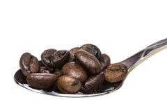 De bonen van de koffie op een lepel Royalty-vrije Stock Afbeeldingen