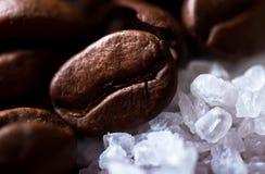 De bonen van de koffie op suikerkorrels Royalty-vrije Stock Fotografie
