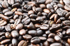 De bonen van de koffie sluiten omhoog Royalty-vrije Stock Fotografie