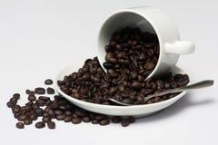De bonen van de koffie in witte kop Stock Foto