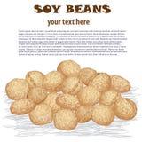 De bonen van de soja Stock Foto's
