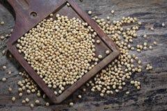 De bonen van de soja op hout Stock Foto's