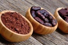 De bonen van het cacaopoeder en donkere chocolade in kommen Royalty-vrije Stock Foto's