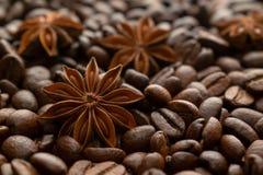De bonen van de koffie en steranijsplant royalty-vrije stock afbeeldingen
