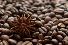 De bonen van de koffie en steranijsplant royalty-vrije stock foto