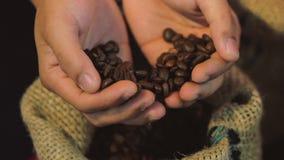 De bonen van de koffie De de handenaanraking van vrouwen bereikt koffiebonen van een zak koffie De kwaliteit van geroosterde koff stock videobeelden