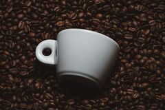 De bonen van de koffie met witte kop Stock Foto